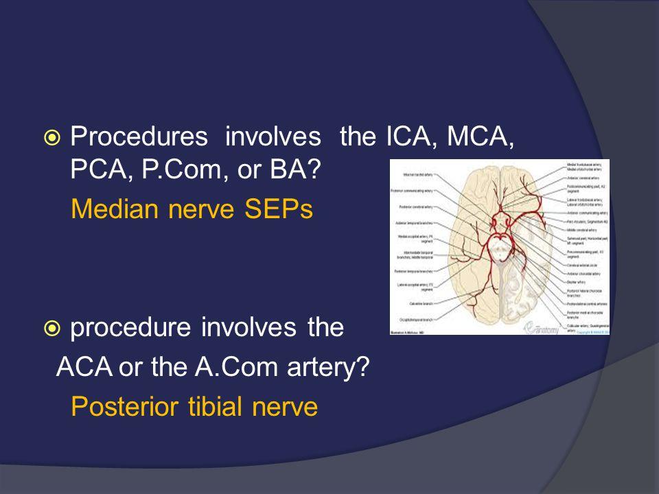  Procedures involves the ICA, MCA, PCA, P.Com, or BA? Median nerve SEPs  procedure involves the ACA or the A.Com artery? Posterior tibial nerve
