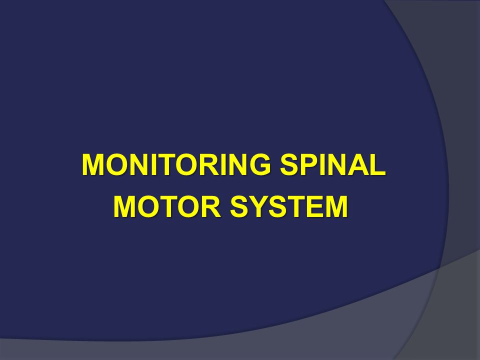 MONITORING SPINAL MOTOR SYSTEM MOTOR SYSTEM