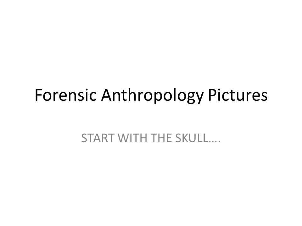 Forensic Anthropology Pictures START WITH THE SKULL….