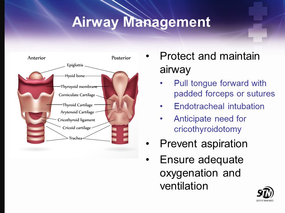 Airway Management Protect and maintain airway Pull tongue forward with padded forceps or sutures Endotracheal intubation Anticipate need for cricothyr