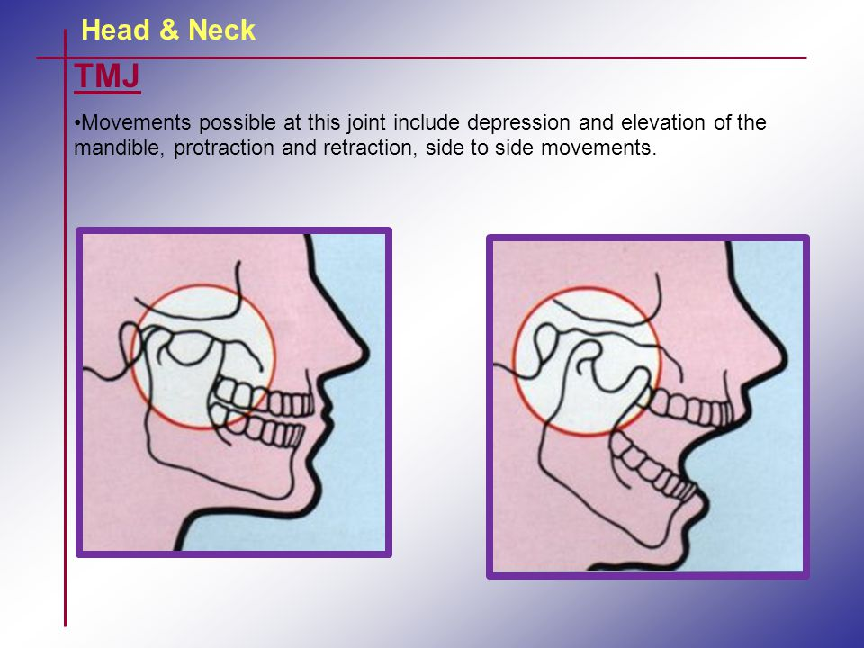 Head & Neck TMJ Movements possible at this joint include depression and elevation of the mandible, protraction and retraction, side to side movements.