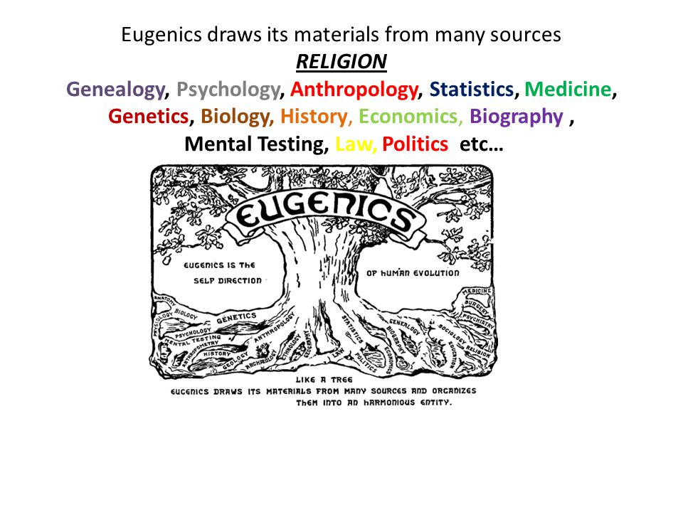 Eugenics draws its materials from many sources RELIGION Genealogy, Psychology, Anthropology, Statistics, Medicine, Genetics, Biology, History, Economics, Biography, Mental Testing, Law, Politics etc…