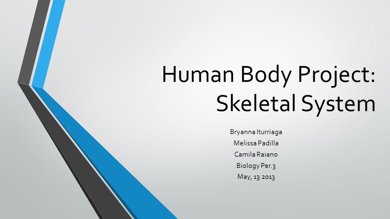 Human Body Project: Skeletal System Bryanna Iturriaga Melissa Padilla Camila Raiano Biology Per.3 May, 13 2013