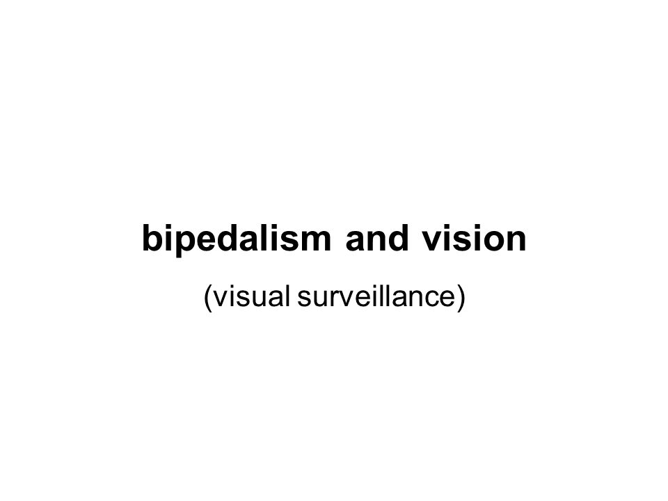 bipedalism and vision (visual surveillance)