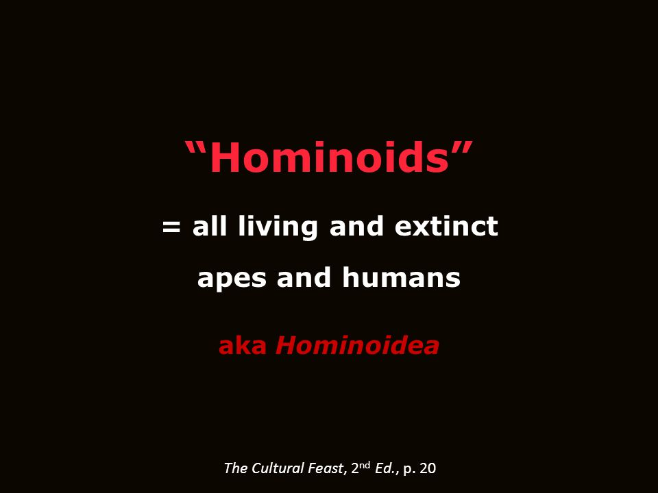 Hominoids = all living and extinct apes and humans aka Hominoidea The Cultural Feast, 2 nd Ed., p.