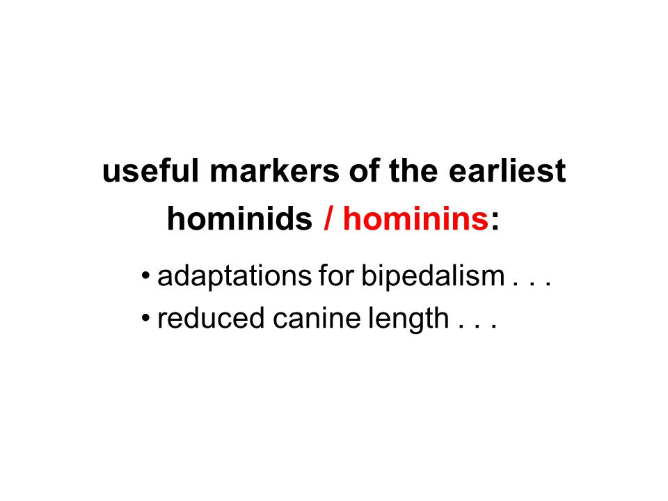useful markers of the earliest hominids / hominins: adaptations for bipedalism...