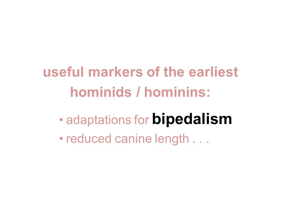 useful markers of the earliest hominids / hominins: adaptations for bipedalism reduced canine length...
