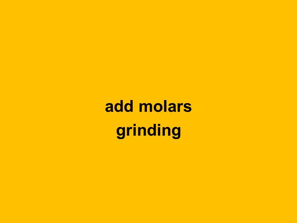 add molars grinding