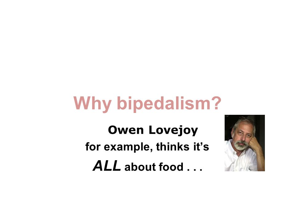 Why bipedalism Owen Lovejoy for example, thinks it's ALL about food...