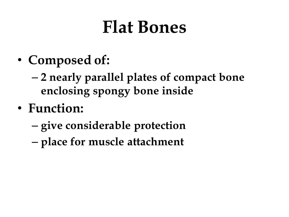 Ribs all 12 attach posteriorly to vertebrae Parts of a Rib 1.Head 2.Neck 3.Tubercle 4.Body 5.Costal Angle