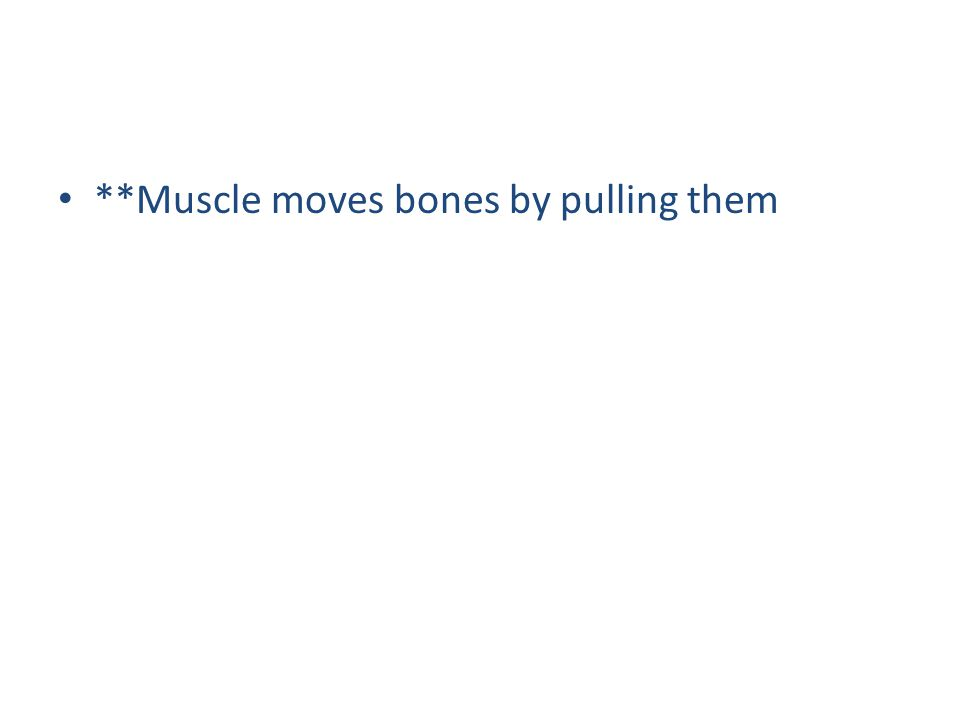 Muscle tissue Made up of cells that can contract (facial tissue) 3 types of muscle tissue 1.