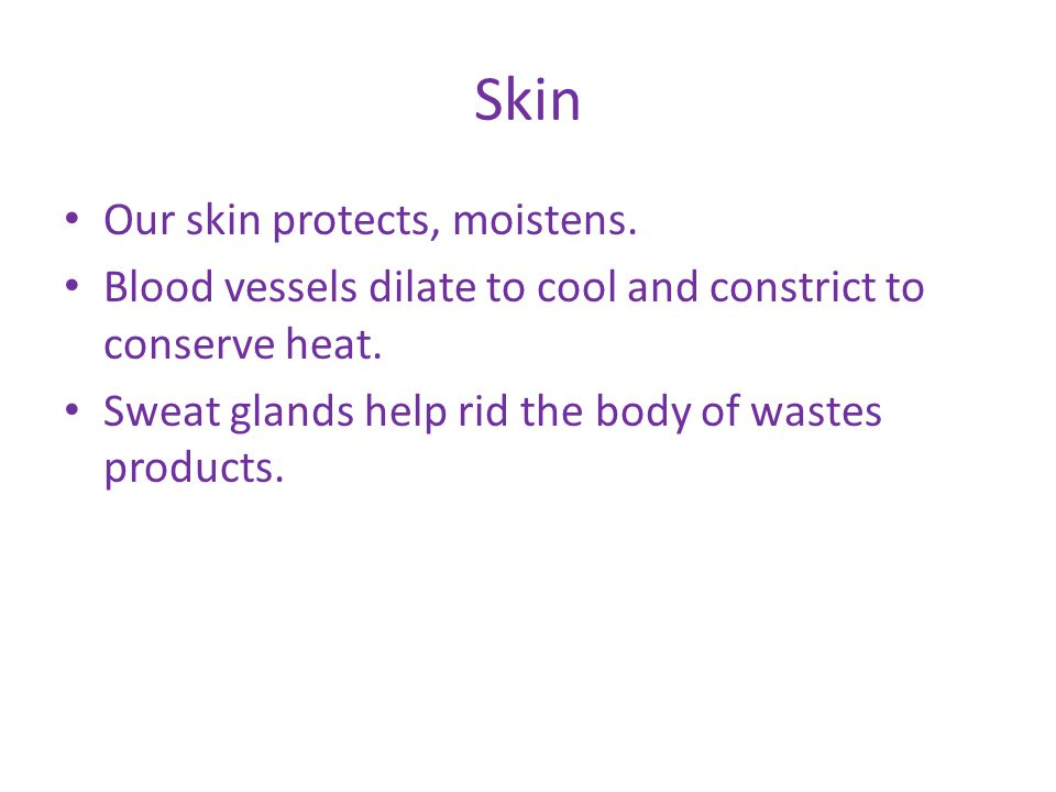 Integumentary Made up of skin, hair, nails *It protects, eliminates waste, regulates body temperature (homeostatis), and helps retain body fluids **Skin contains exocrine glands, sweat glands, and oil glands