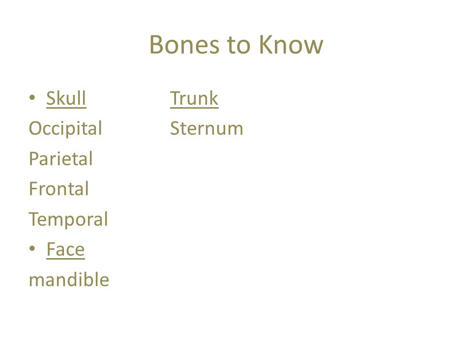 Bone Health Calcium is very important Stress to bones is obtained through weight bearing exercise