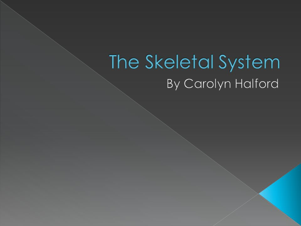  Bones regulate the amount of blood calcium in our bodies www.docstoc.com