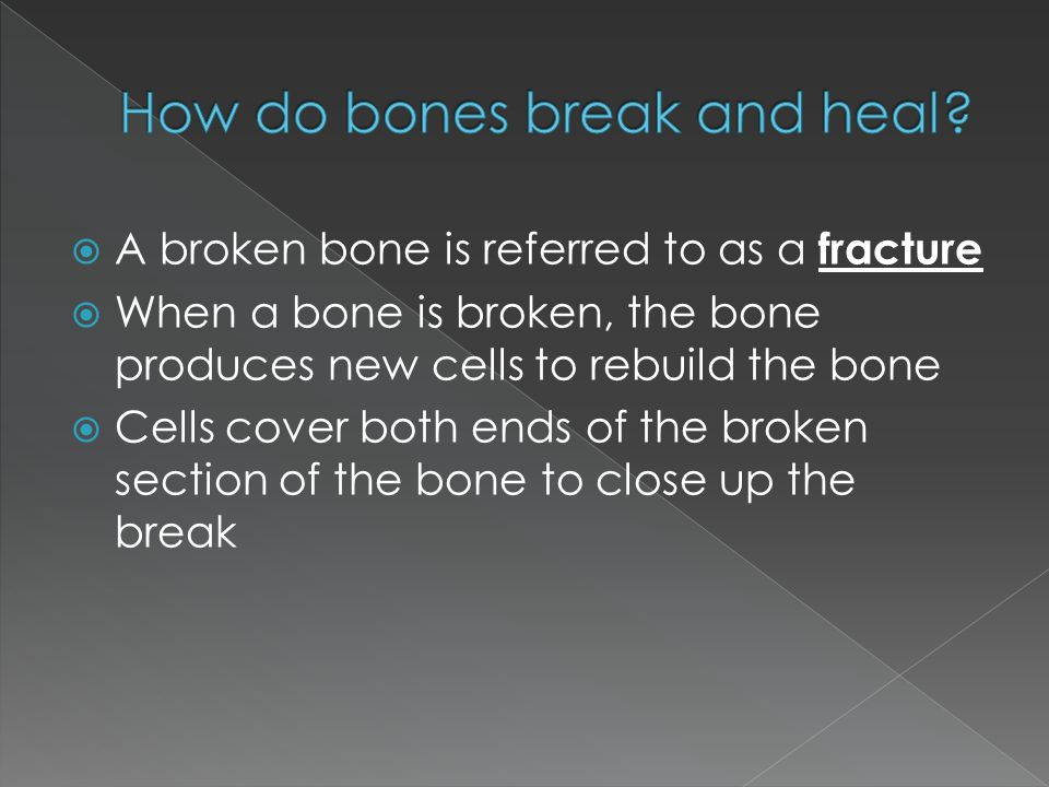  A broken bone is referred to as a fracture  When a bone is broken, the bone produces new cells to rebuild the bone  Cells cover both ends of the b