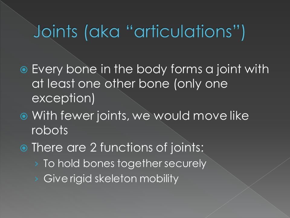  Every bone in the body forms a joint with at least one other bone (only one exception)  With fewer joints, we would move like robots  There are 2