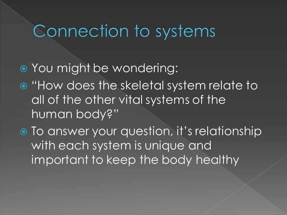 """ You might be wondering:  """"How does the skeletal system relate to all of the other vital systems of the human body?""""  To answer your question, it's"""