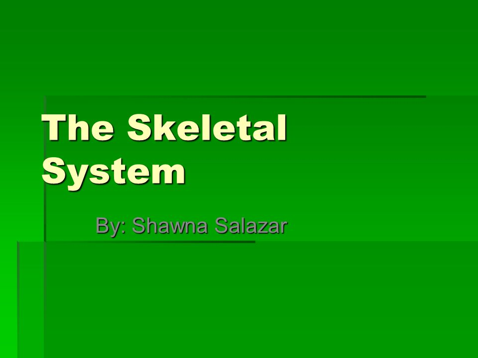 The Skeletal System By: Shawna Salazar
