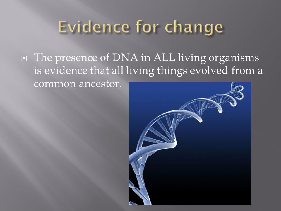  The presence of DNA in ALL living organisms is evidence that all living things evolved from a common ancestor.