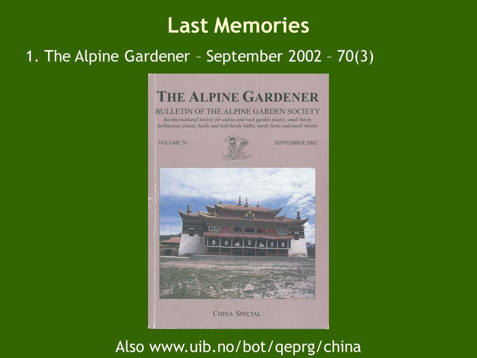 Pedicularis – a Sichuan and Qinghai wonder.