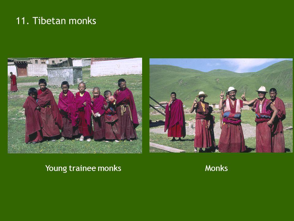 10. Chinese (Yunnan) field crew