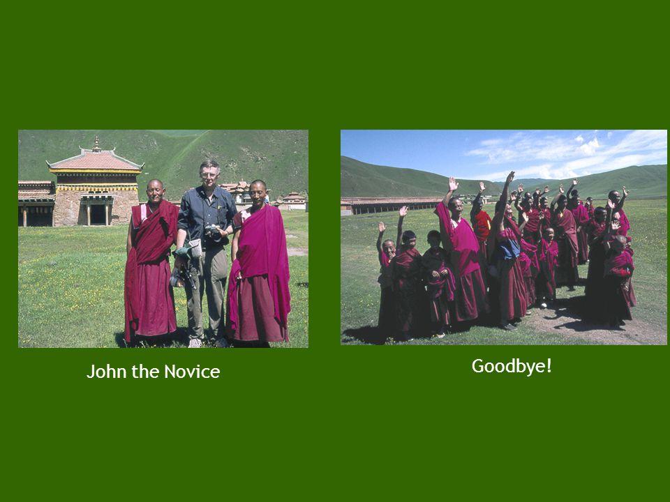 11. Tibetan monks Young trainee monksMonks