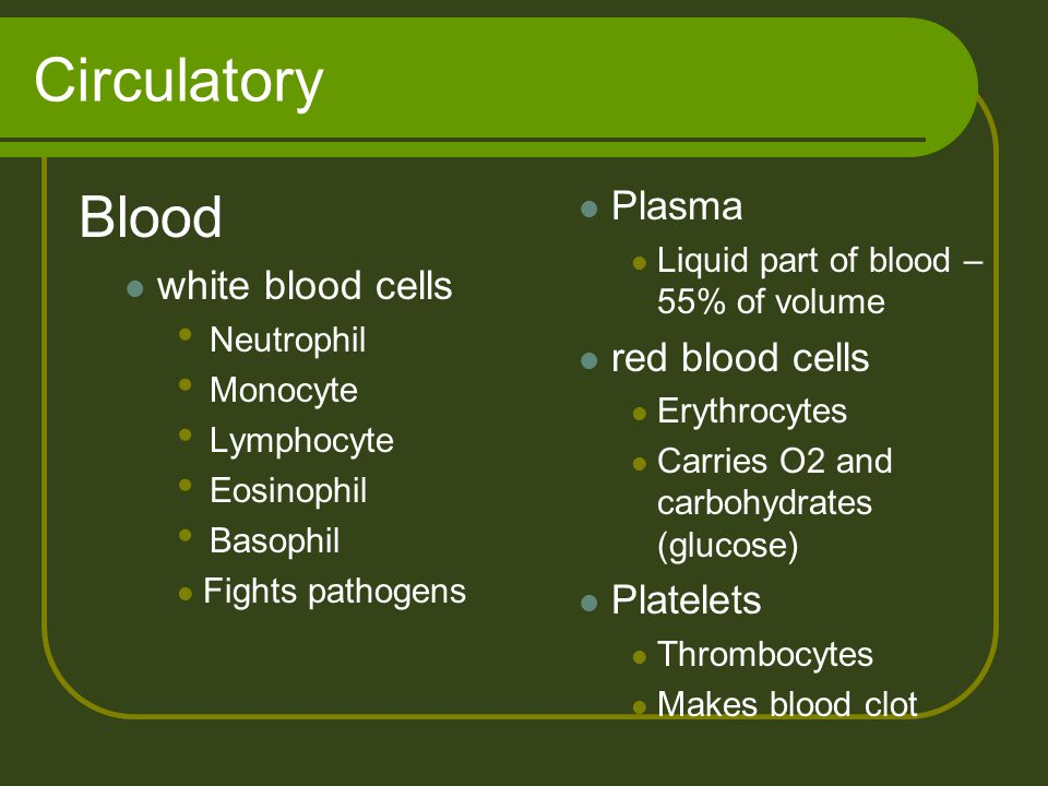 Circulatory Plasma Liquid part of blood – 55% of volume red blood cells Erythrocytes Carries O2 and carbohydrates (glucose) Platelets Thrombocytes Mak
