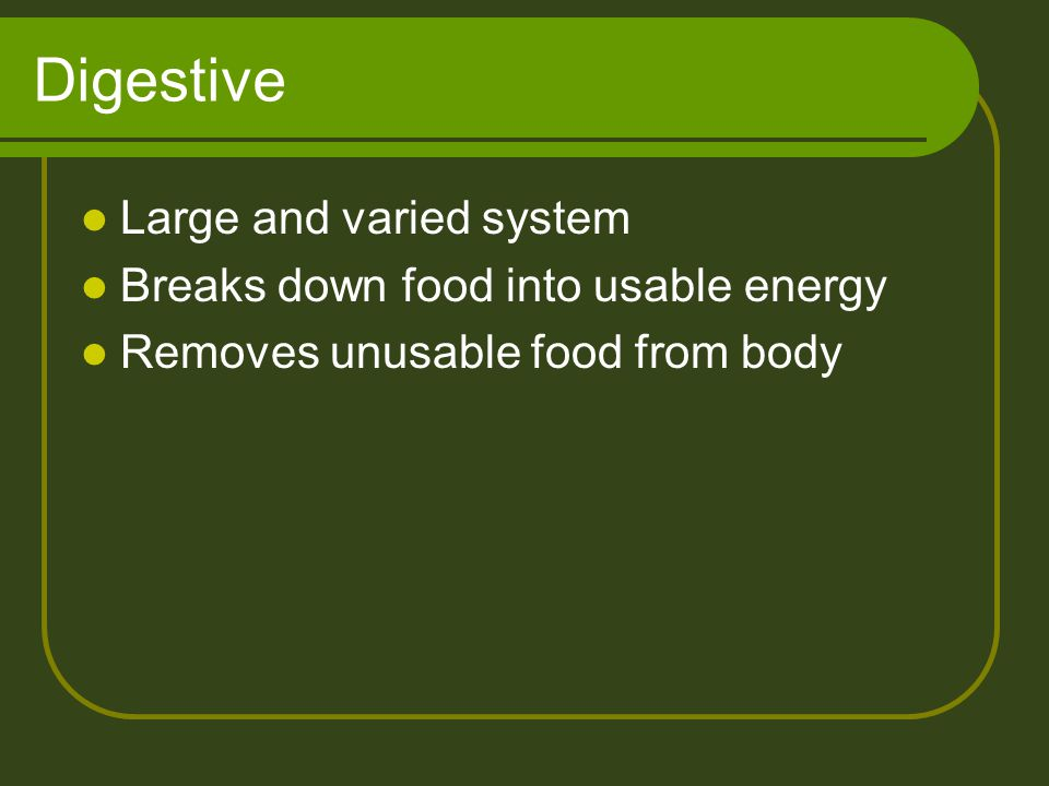 Digestive Large and varied system Breaks down food into usable energy Removes unusable food from body