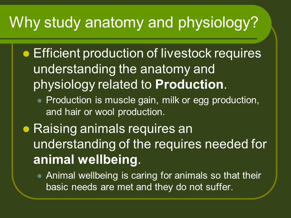 Why study anatomy and physiology? Efficient production of livestock requires understanding the anatomy and physiology related to Production. Productio