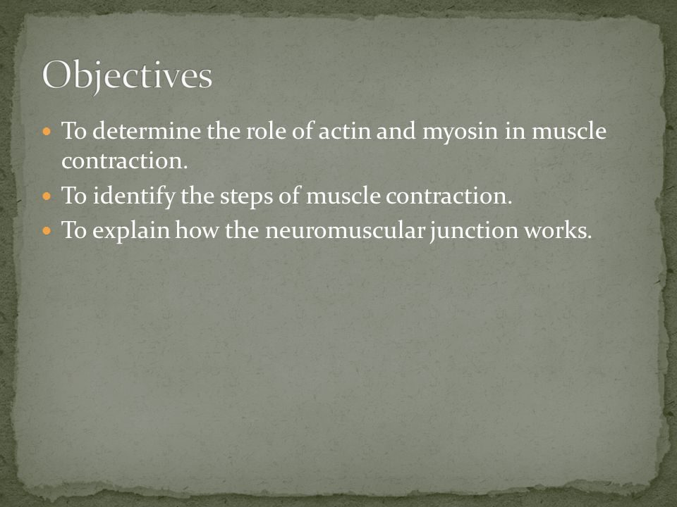 Complete the Do Now on the Unit of Muscle Contraction