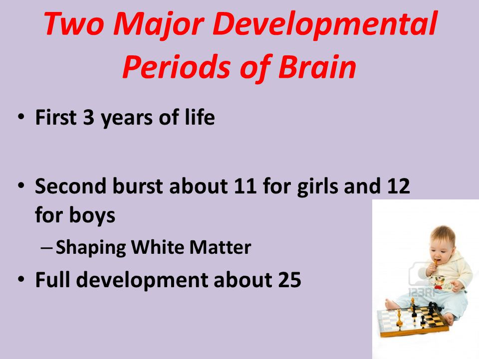 Two Major Developmental Periods of Brain First 3 years of life Second burst about 11 for girls and 12 for boys – Shaping White Matter Full development about 25