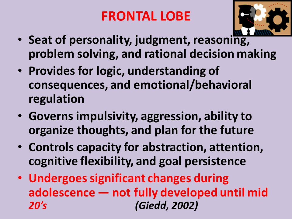 FRONTAL LOBE Seat of personality, judgment, reasoning, problem solving, and rational decision making Provides for logic, understanding of consequences, and emotional/behavioral regulation Governs impulsivity, aggression, ability to organize thoughts, and plan for the future Controls capacity for abstraction, attention, cognitive flexibility, and goal persistence Undergoes significant changes during adolescence — not fully developed until mid 20's (Giedd, 2002)