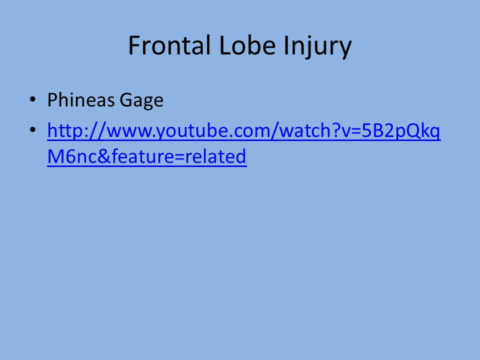 Frontal Lobe Injury Phineas Gage http://www.youtube.com/watch?v=5B2pQkq M6nc&feature=related http://www.youtube.com/watch?v=5B2pQkq M6nc&feature=related