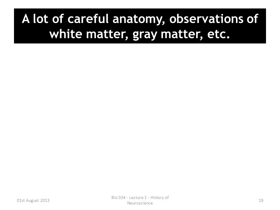 A lot of careful anatomy, observations of white matter, gray matter, etc. 01st August 2013 Bio 334 - Lecture 1 - History of Neuroscience 19