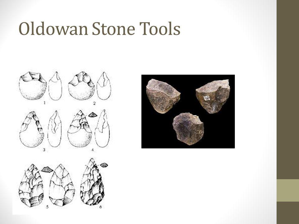 Oldowan Stone Tools