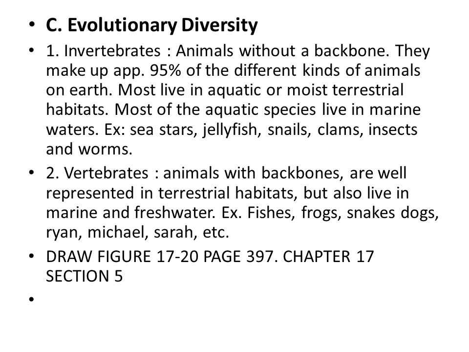 C. Evolutionary Diversity 1. Invertebrates : Animals without a backbone.