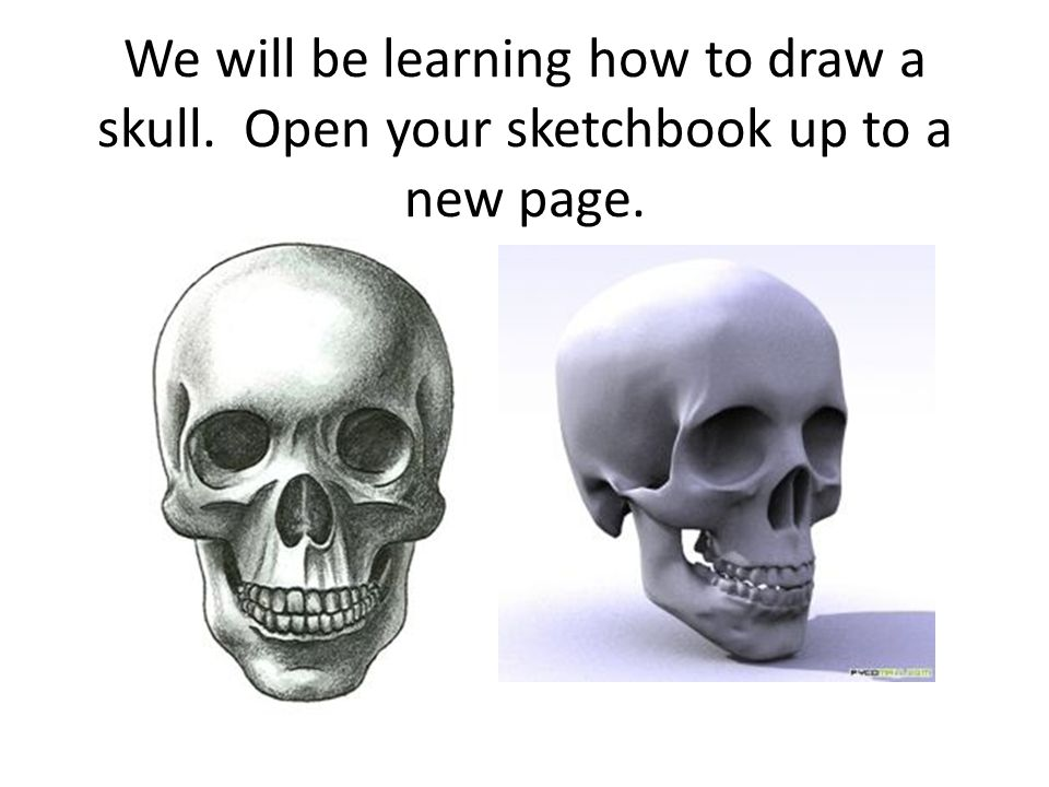 We will be learning how to draw a skull. Open your sketchbook up to a new page.