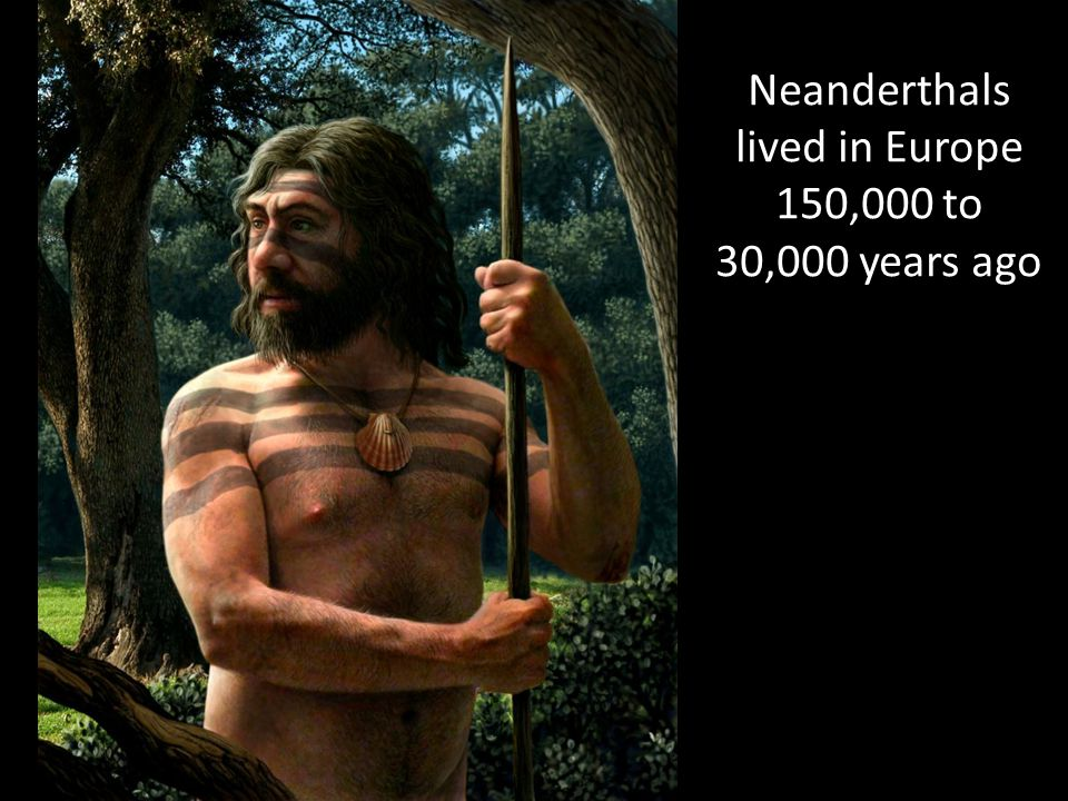 Neanderthals lived in Europe 150,000 to 30,000 years ago