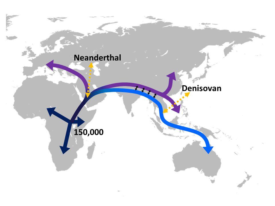 150,000 Neanderthal Denisovan