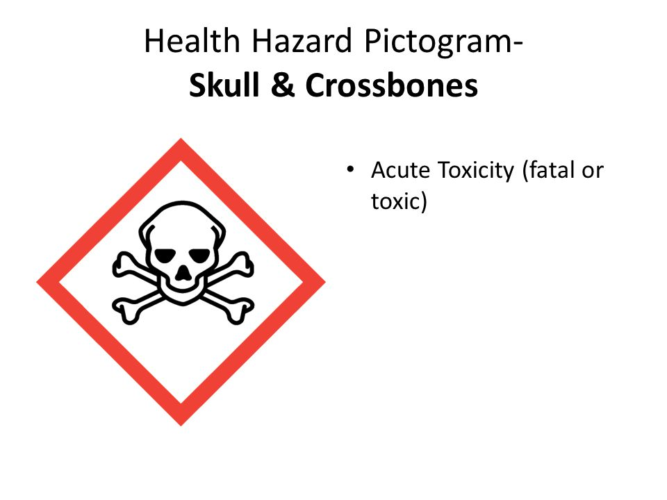 Health Hazard Pictogram- Skull & Crossbones Acute Toxicity (fatal or toxic)