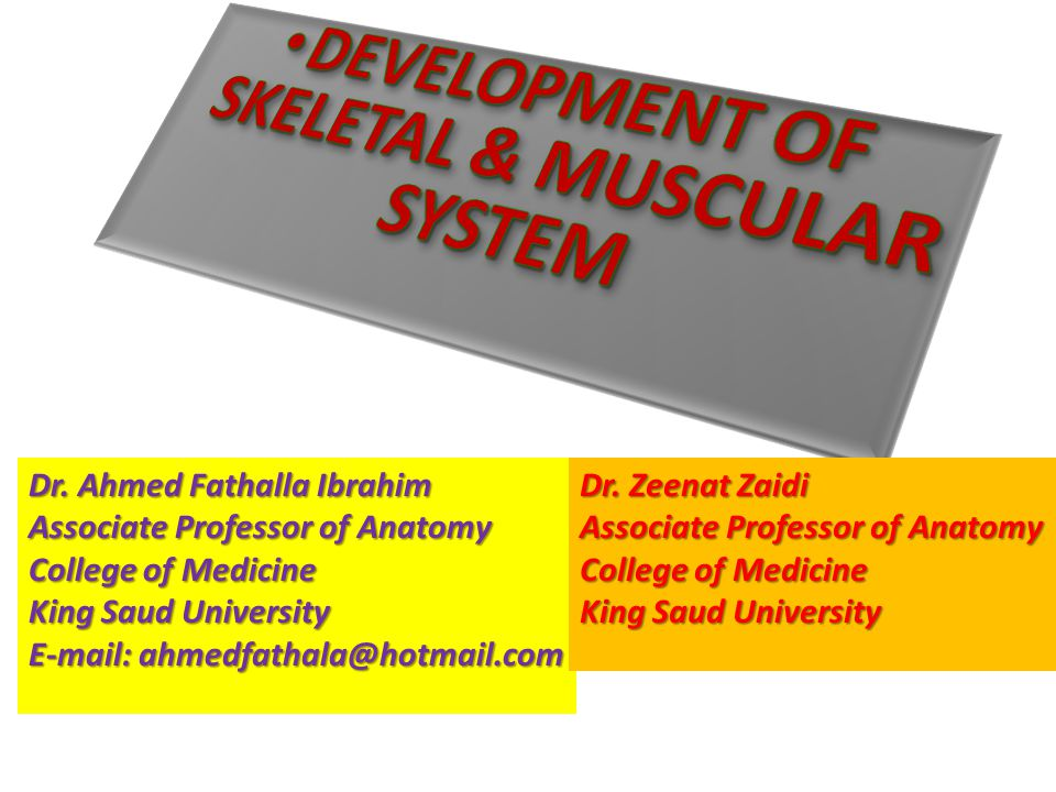 Dr. Ahmed Fathalla Ibrahim Associate Professor of Anatomy College of Medicine King Saud University E-mail: ahmedfathala@hotmail.com Dr. Zeenat Zaidi A