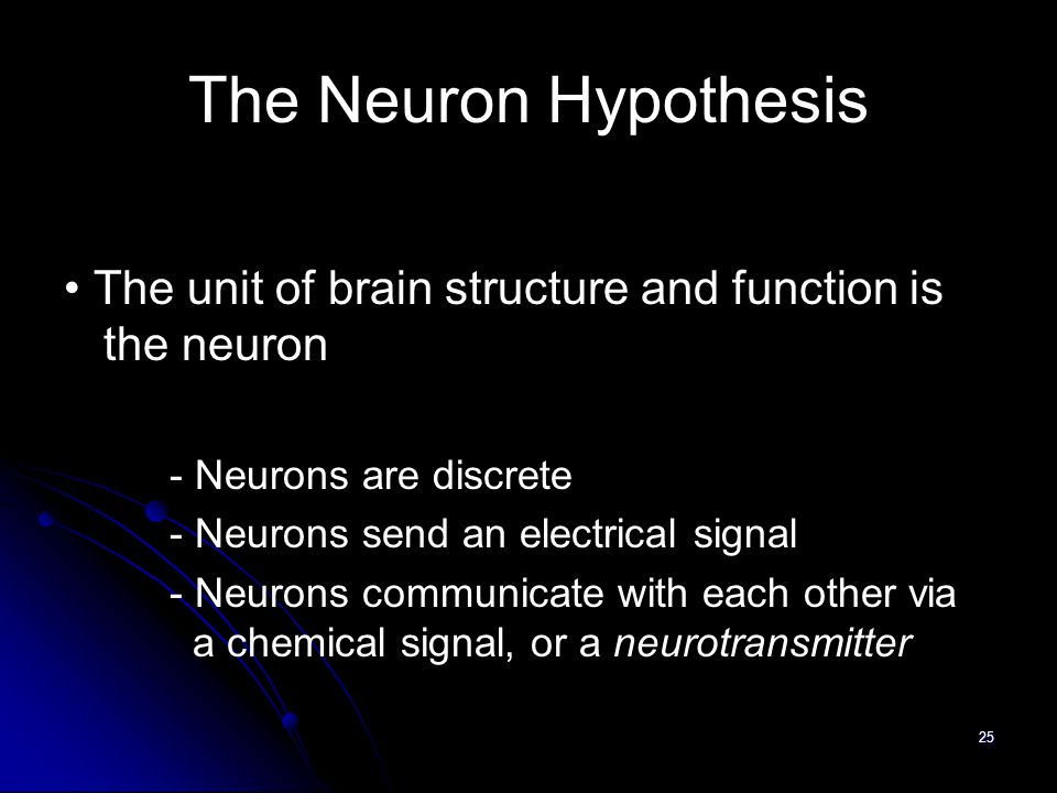 25 The Neuron Hypothesis The unit of brain structure and function is the neuron - Neurons are discrete - Neurons send an electrical signal - Neurons communicate with each other via a chemical signal, or a neurotransmitter