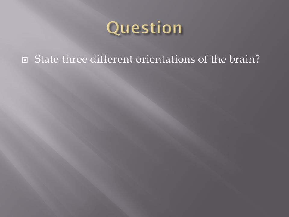  State three different orientations of the brain?