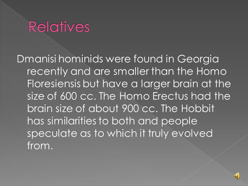 Dmanisi hominids were found in Georgia recently and are smaller than the Homo Floresiensis but have a larger brain at the size of 600 cc.