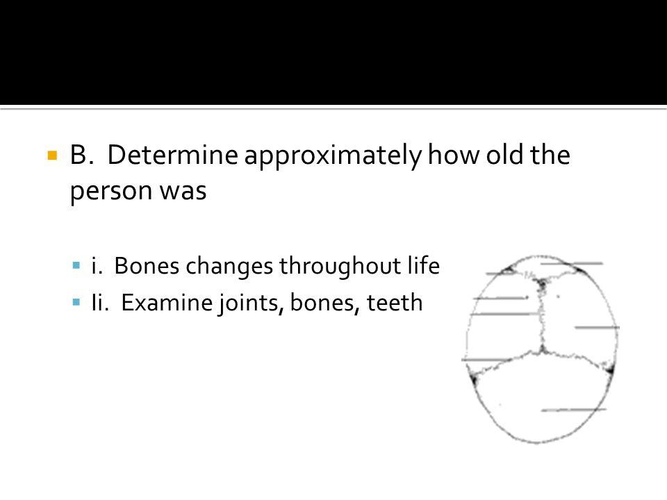  i. Amount of soft tissue present  Ii. Weathering cracks on bones  Iii. Animal/rodent bites