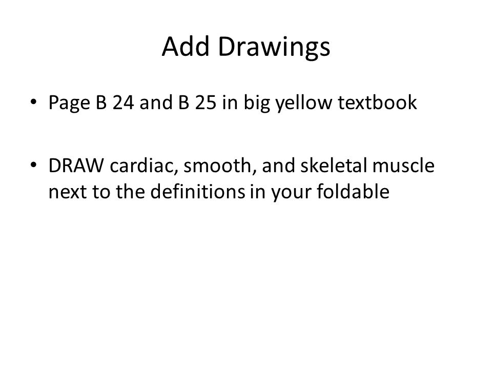 Add Drawings Page B 24 and B 25 in big yellow textbook DRAW cardiac, smooth, and skeletal muscle next to the definitions in your foldable