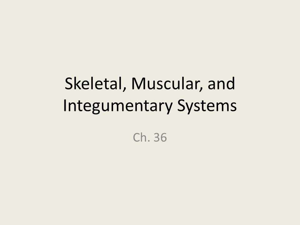 Skeletal, Muscular, and Integumentary Systems Ch. 36