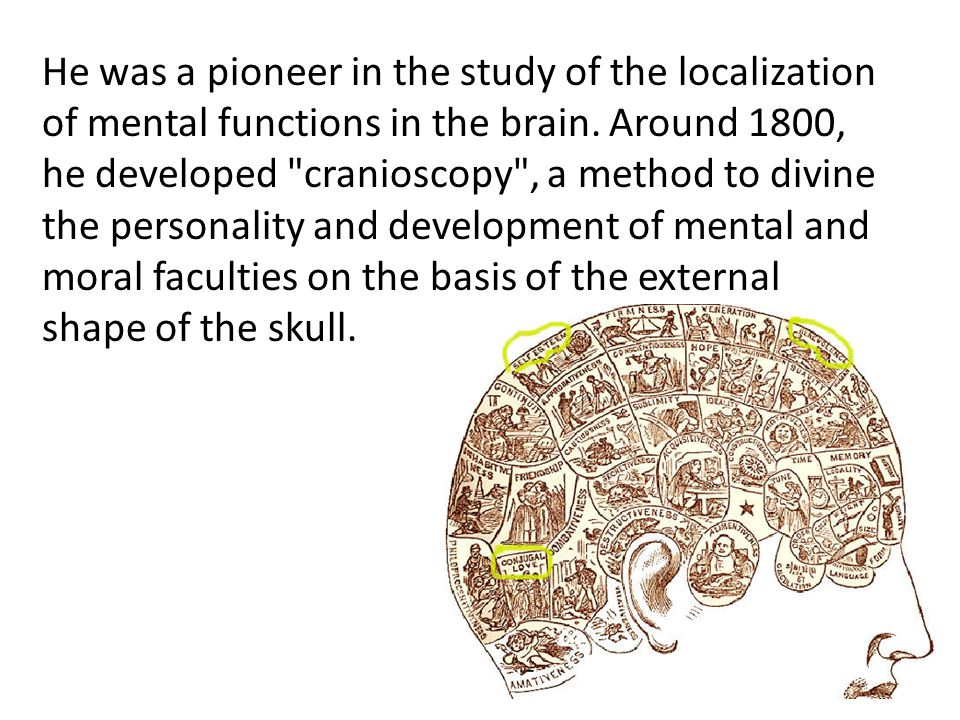 He was a pioneer in the study of the localization of mental functions in the brain.