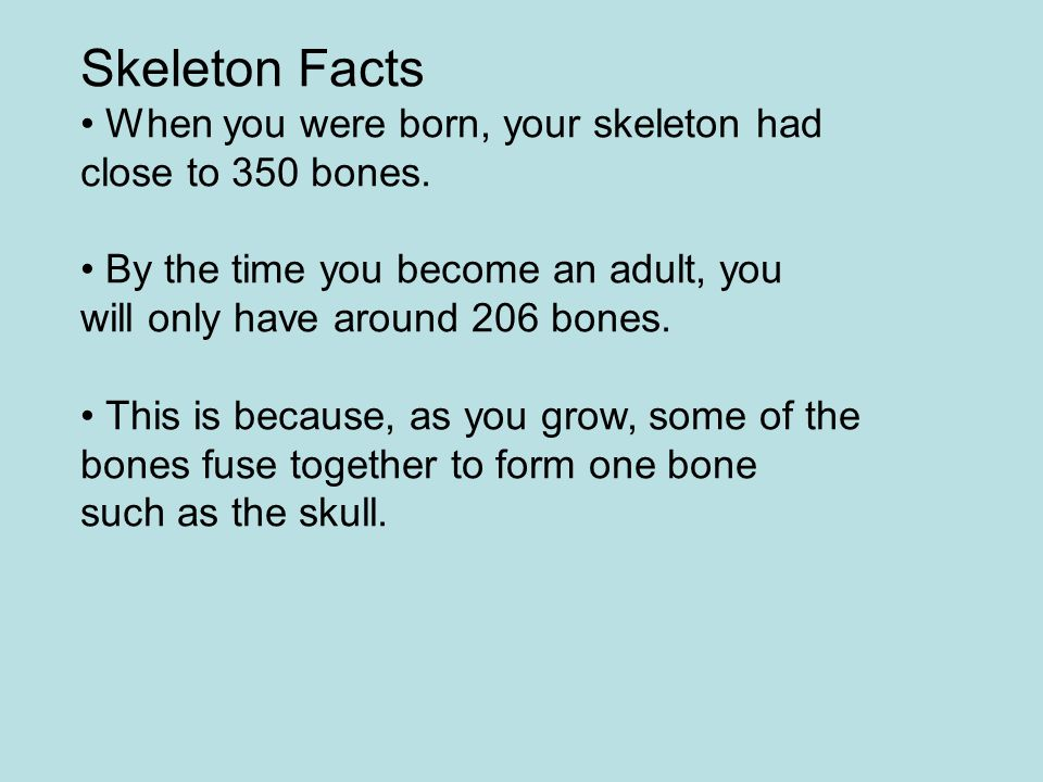 Skeleton Facts When you were born, your skeleton had close to 350 bones. By the time you become an adult, you will only have around 206 bones. This is