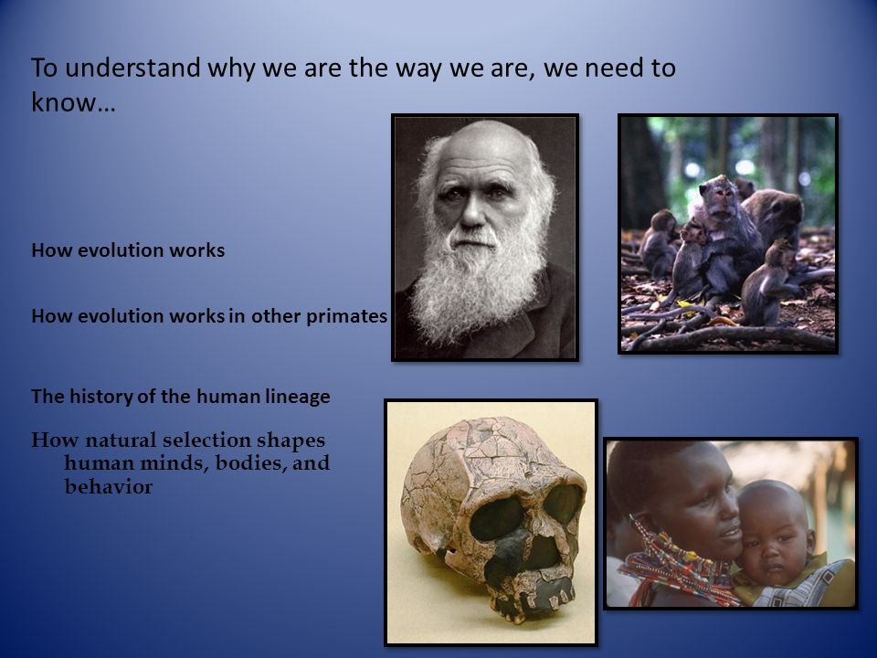 Physical Anthropology Challenges Evolution – A change in the genetic structure of a population from one generation to the next.